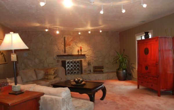 Paneling and Faux Rock Fire Place Makeover